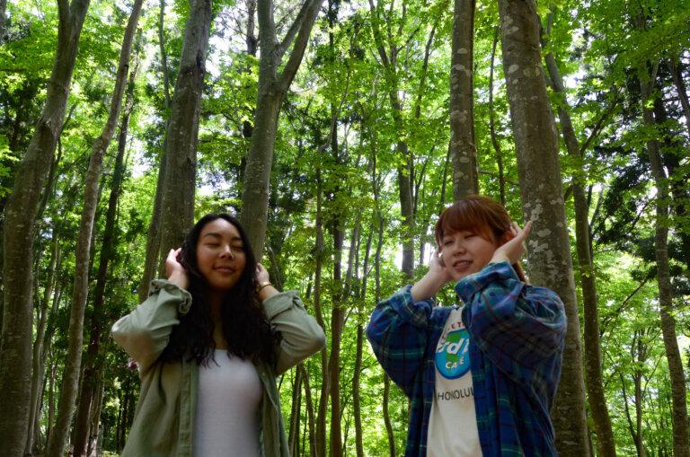 森の家の森林セラピー®の特徴①